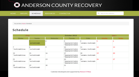 Anderson County Recovery Screenshot3p
